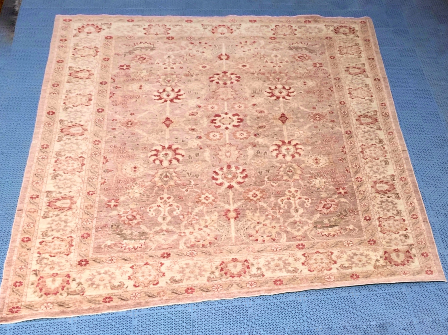pakistan 8x10 wool