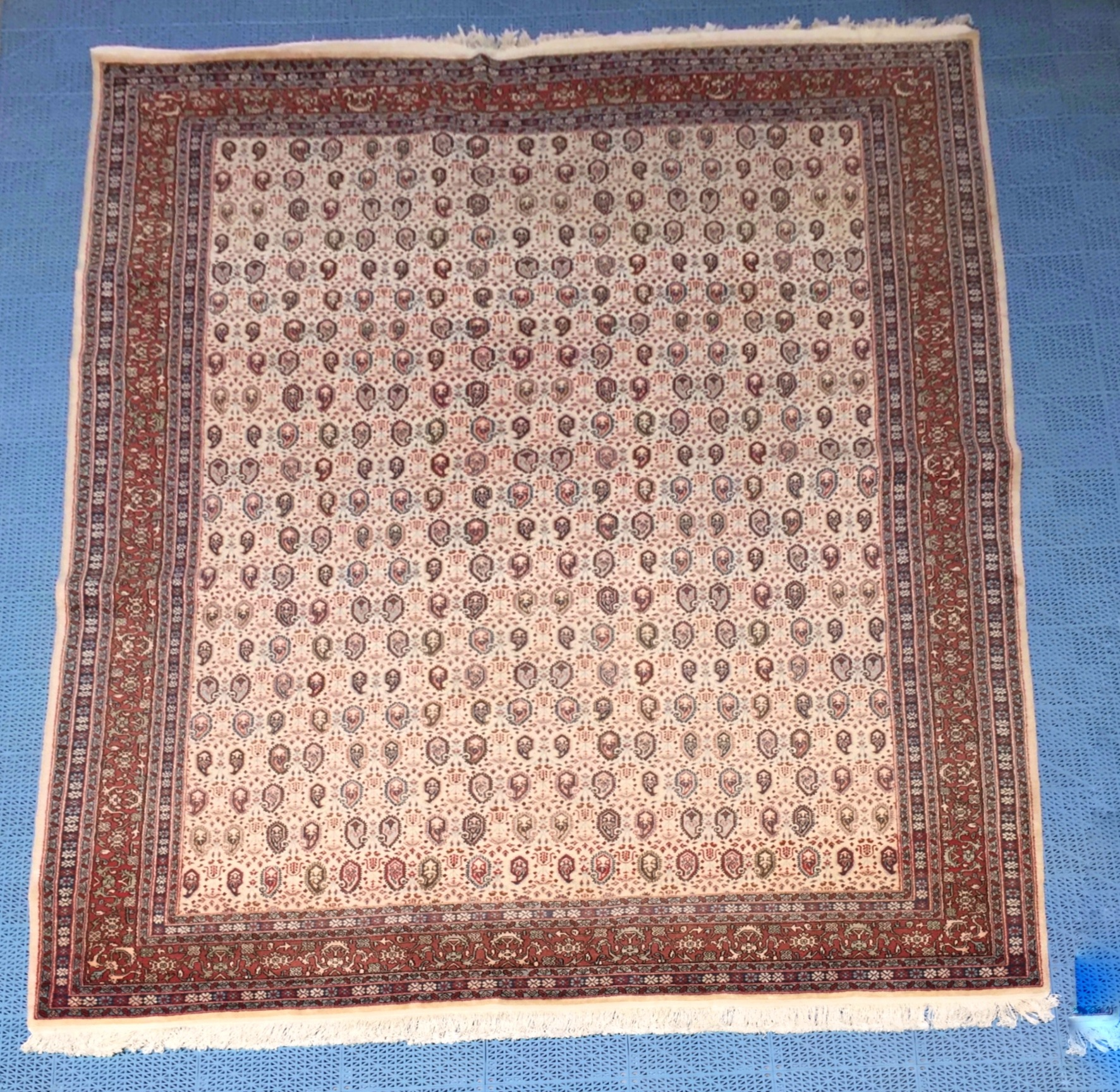 persian 7x13 wool